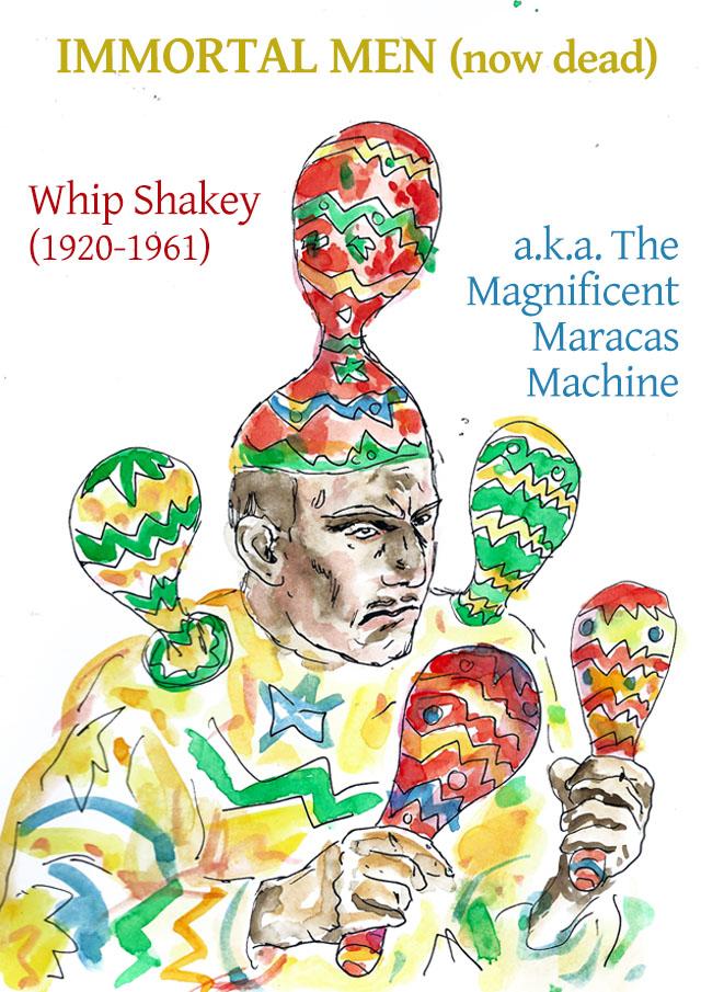 20-5-whipshakey
